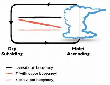 This graphic illustrates the vapor buoyancy effect, in which cold, humid air rises because it is lighter than dry air. (Da Yang/UC Davis)
