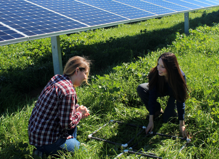 Rebecca R. Hernandez, right, and Sadie Olsen, a student intern in Hernandez's lab, set up an experiment at a solar farm. (Andrea Martinez/UC Davis photo)
